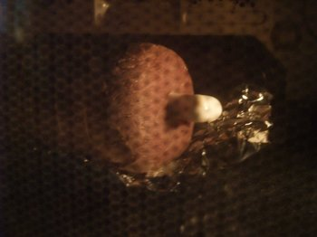 マンガ肉ローストビーフ003.jpg