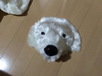 shirokuma129_002.jpg