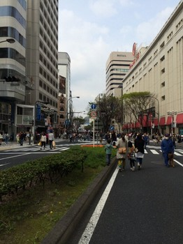 shirokuma131_004.jpg