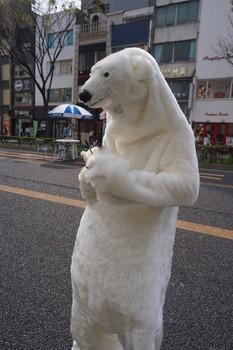 shirokuma131_005.jpg